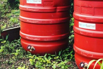 mirainbarrel recycled for water collection